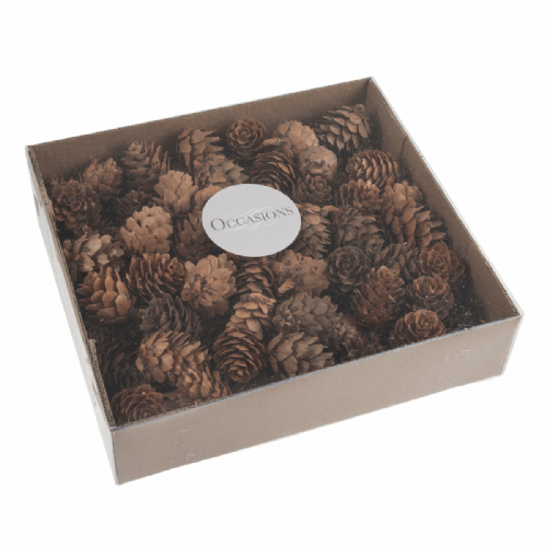 Pinecones 100 Pieces